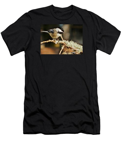 Sweet Little Chickadee Men's T-Shirt (Slim Fit) by VLee Watson