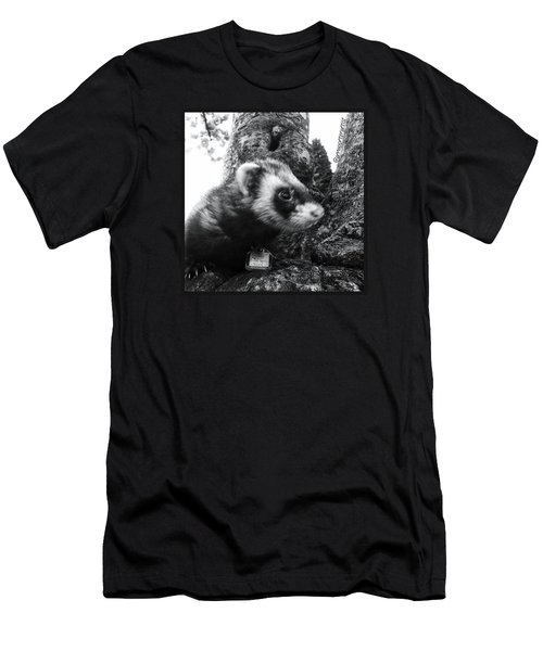 Sweet Little Nicky Chillin In A Tree Men's T-Shirt (Slim Fit) by Anna Porter