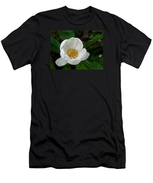 Sweetbay Magnolia Men's T-Shirt (Slim Fit) by William Tanneberger