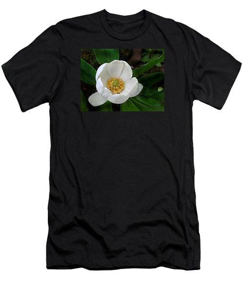 Sweetbay Magnolia Men's T-Shirt (Slim Fit)