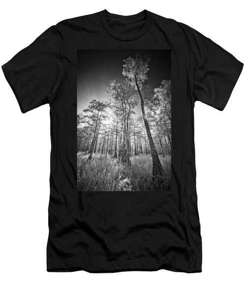 Tall Cypress Trees Men's T-Shirt (Athletic Fit)