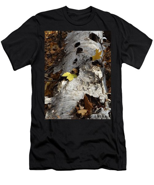 Tall Fallen Birch With Leaves Men's T-Shirt (Athletic Fit)