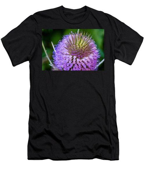 Teasel Men's T-Shirt (Athletic Fit)