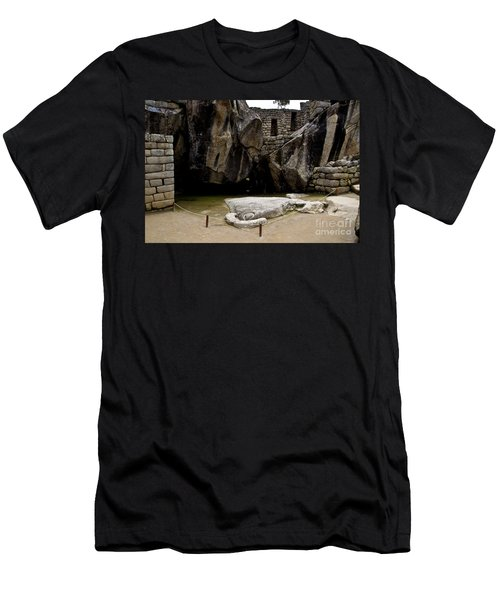 Temple Of The Condor Men's T-Shirt (Slim Fit) by Kathy McClure