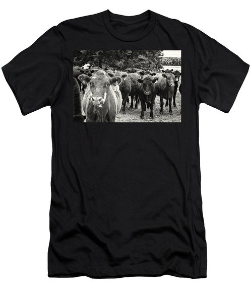 Tennessee Cattle Men's T-Shirt (Athletic Fit)