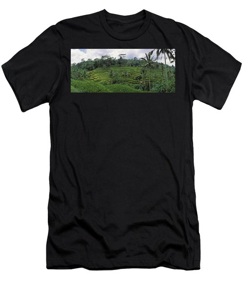 Terraced Rice Field, Bali, Indonesia Men's T-Shirt (Athletic Fit)