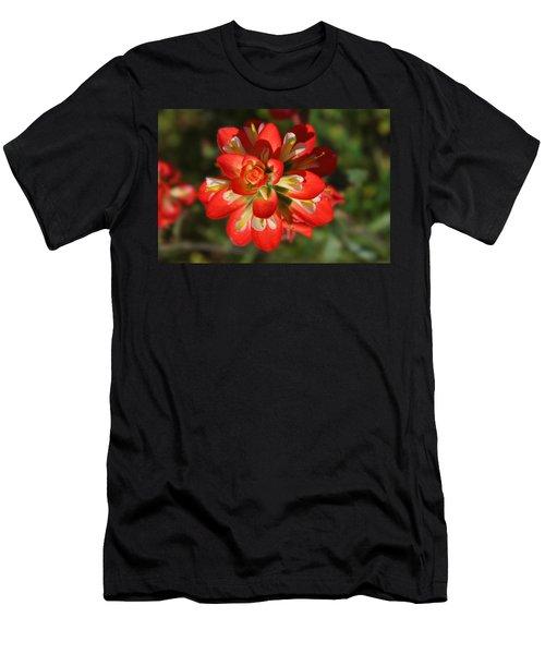 Texas Paintbrush Men's T-Shirt (Slim Fit) by Lynn Bauer