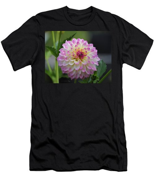 The Beautiful Dahlia Men's T-Shirt (Athletic Fit)