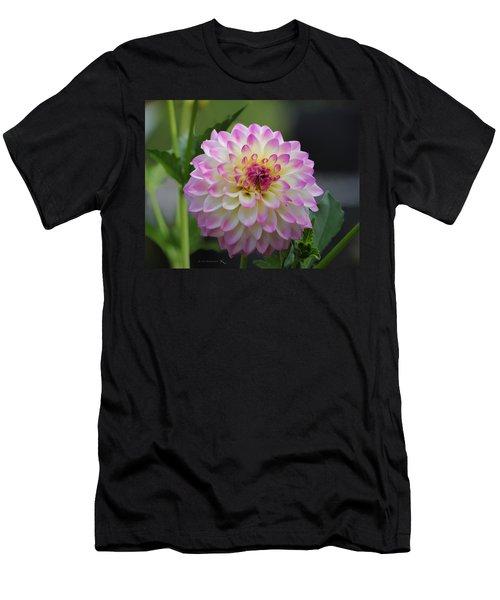 The Beautiful Dahlia Men's T-Shirt (Athletic Fit)
