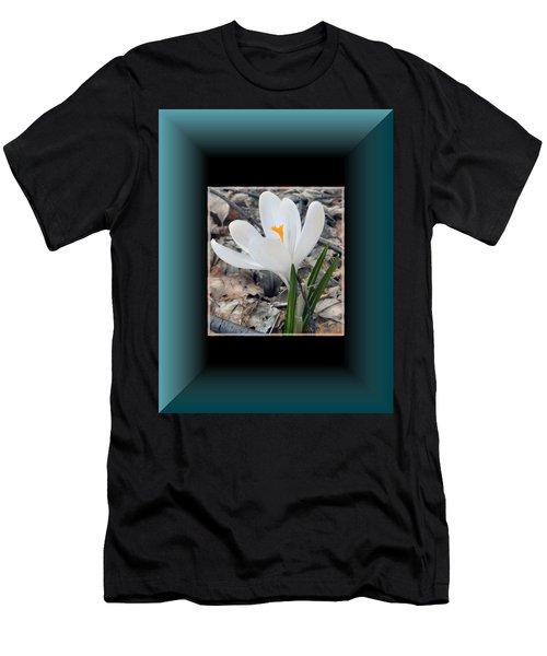 The Beautiful Single Crocus Men's T-Shirt (Athletic Fit)