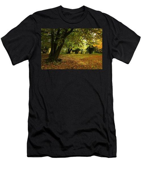 The Beauty Of Autumn Men's T-Shirt (Athletic Fit)
