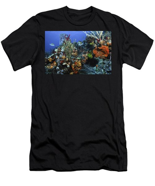 The Busy Reef Men's T-Shirt (Athletic Fit)