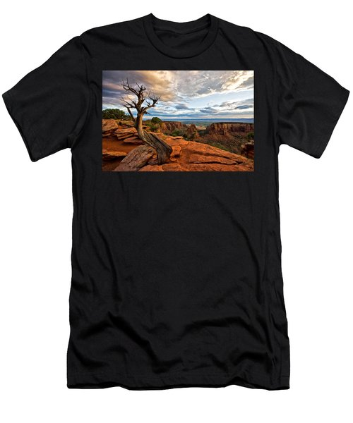 The Crooked Old Tree Men's T-Shirt (Athletic Fit)