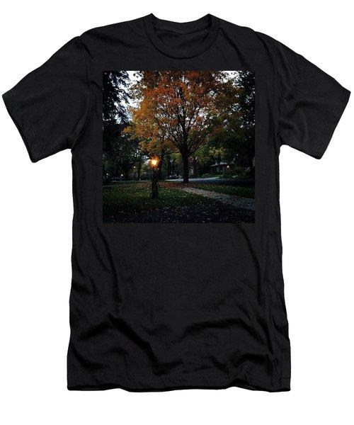 Illuminating Autumn Men's T-Shirt (Athletic Fit)