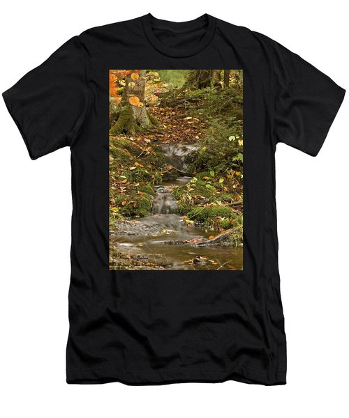 The Little Brook That Could Men's T-Shirt (Athletic Fit)