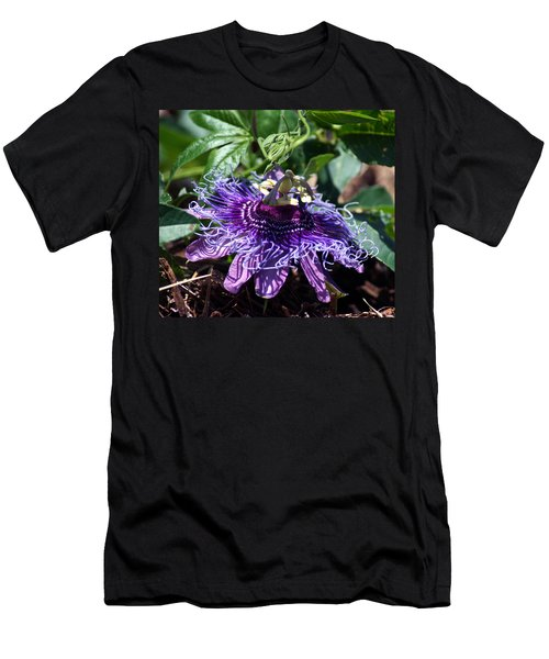 The Passion Flower Men's T-Shirt (Athletic Fit)