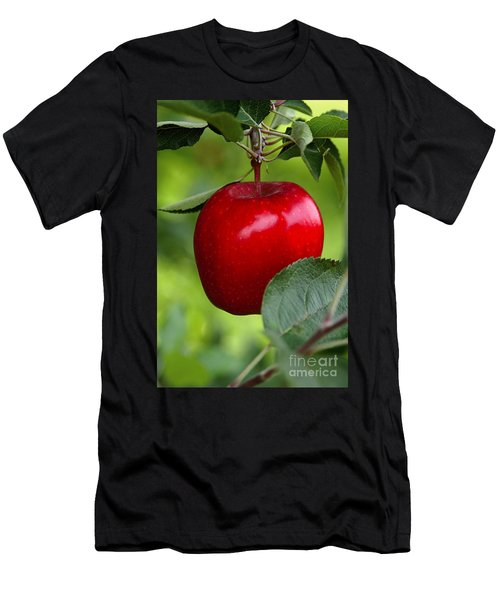 The Red Apple Men's T-Shirt (Athletic Fit)
