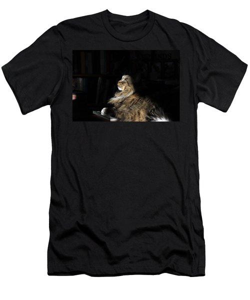 The Regal Look Men's T-Shirt (Athletic Fit)