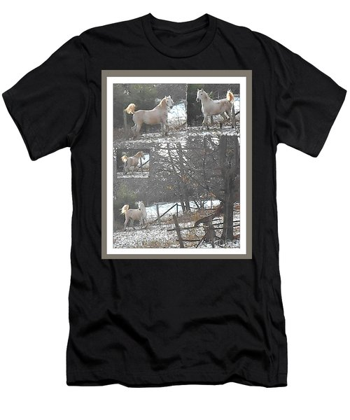 The Stallion Lives In The Country Men's T-Shirt (Athletic Fit)