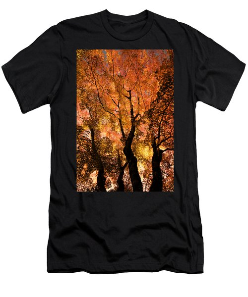 The Trees Dance As The Sun Smiles Men's T-Shirt (Athletic Fit)