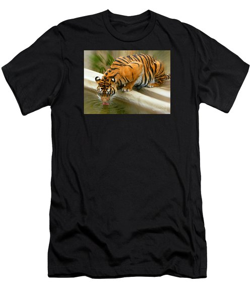 Thirsty Sumatran Tiger Men's T-Shirt (Athletic Fit)