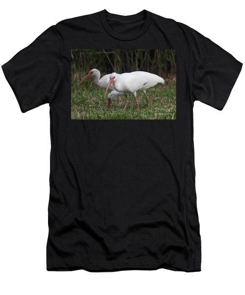 Three Ibis Together Men's T-Shirt (Slim Fit) by Christiane Schulze Art And Photography