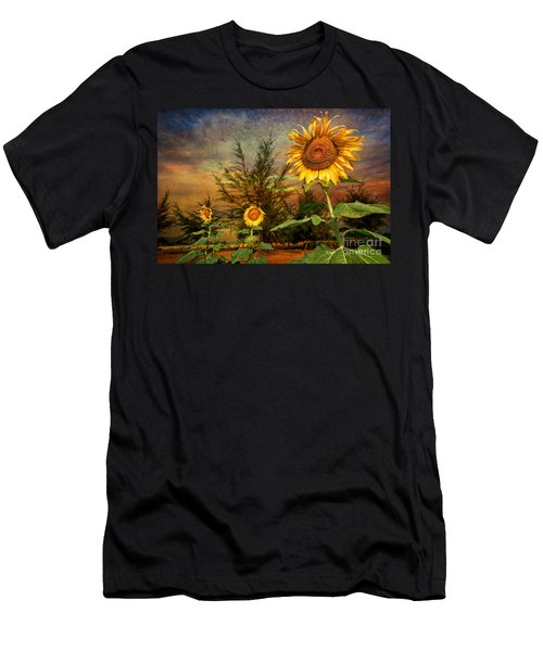 Three Sunflowers Men's T-Shirt (Athletic Fit)