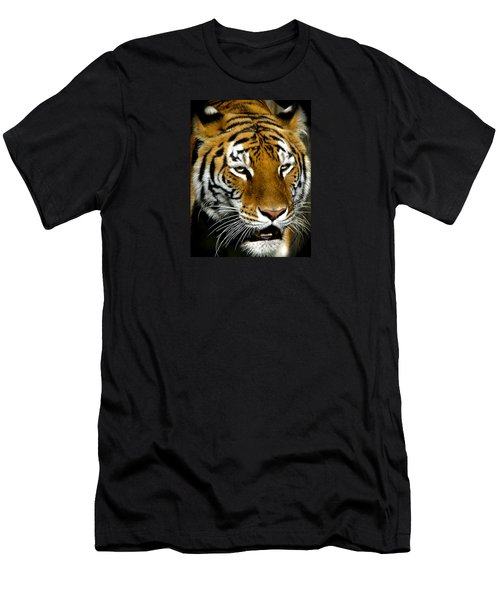 Tiger Tiger Burning Bright Men's T-Shirt (Slim Fit) by Venetia Featherstone-Witty