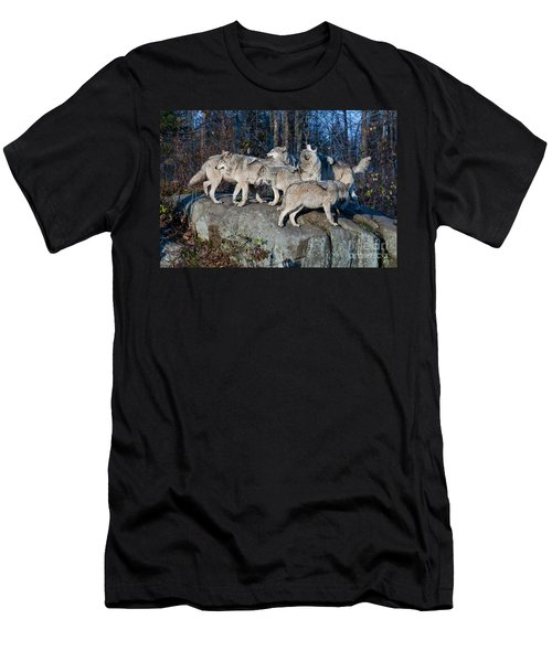 Timber Wolf Pack Men's T-Shirt (Athletic Fit)