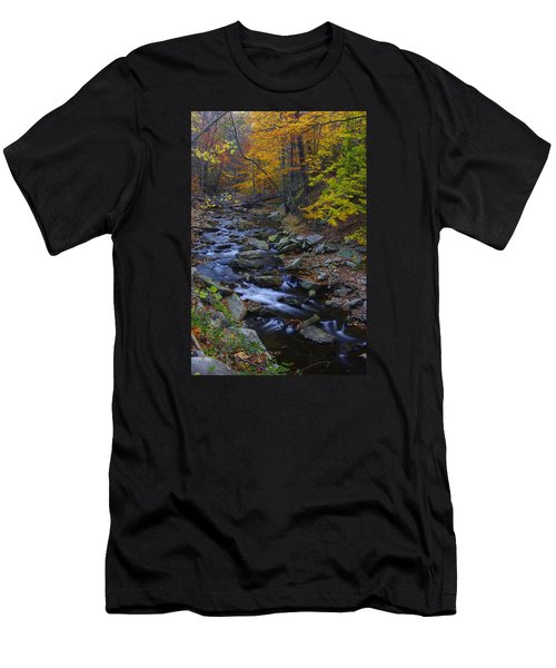 Tracking Color - Big Hunting Creek Catoctin Mountain Park Maryland Autumn Afternoon Men's T-Shirt (Slim Fit) by Michael Mazaika