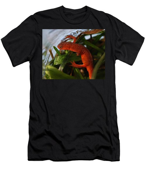 Travels Of A Newt Men's T-Shirt (Athletic Fit)