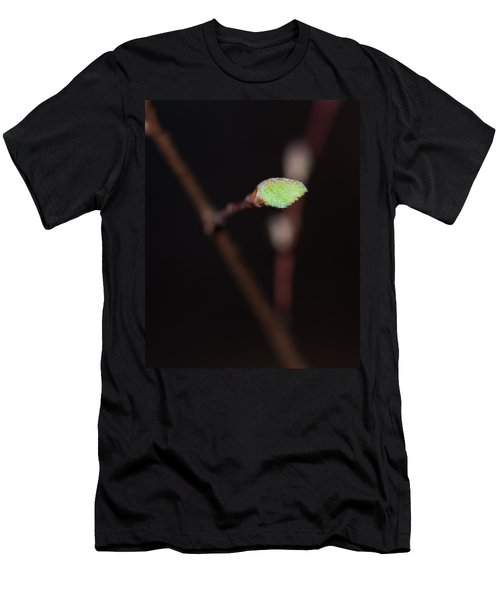 Tree Budding In October Men's T-Shirt (Athletic Fit)