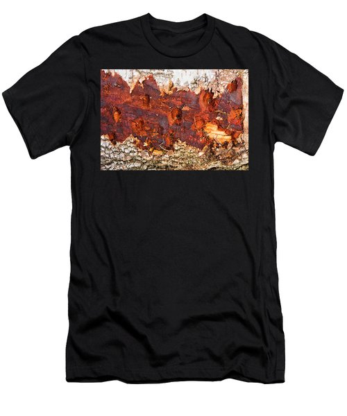 Tree Closeup - Wood Texture Men's T-Shirt (Athletic Fit)