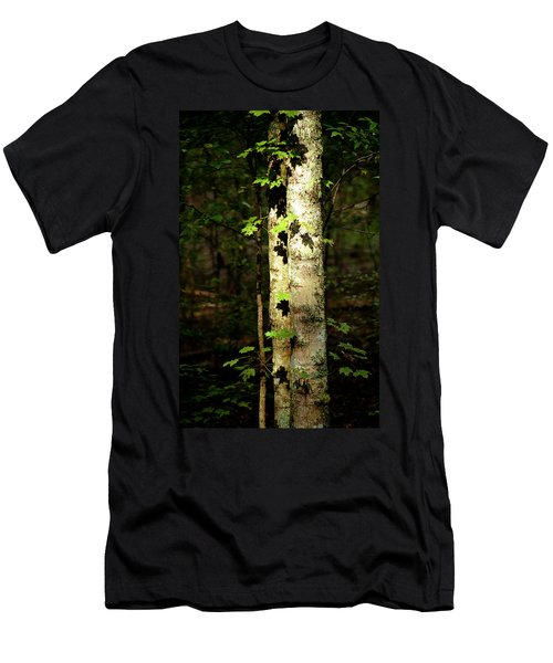 Tree In The Woods Men's T-Shirt (Athletic Fit)