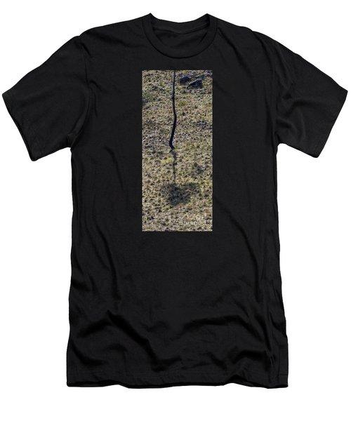 Australia - Eucalyptus Tree Shadow Men's T-Shirt (Athletic Fit)