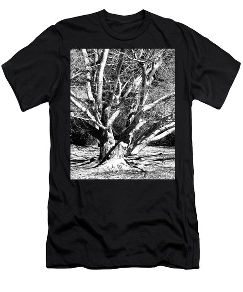 Tree Study In Black N White Men's T-Shirt (Athletic Fit)