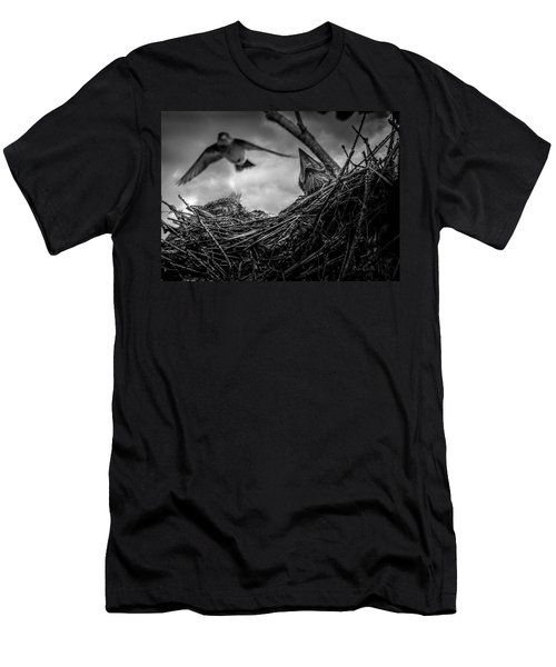 Tree Swallows In Nest Men's T-Shirt (Athletic Fit)