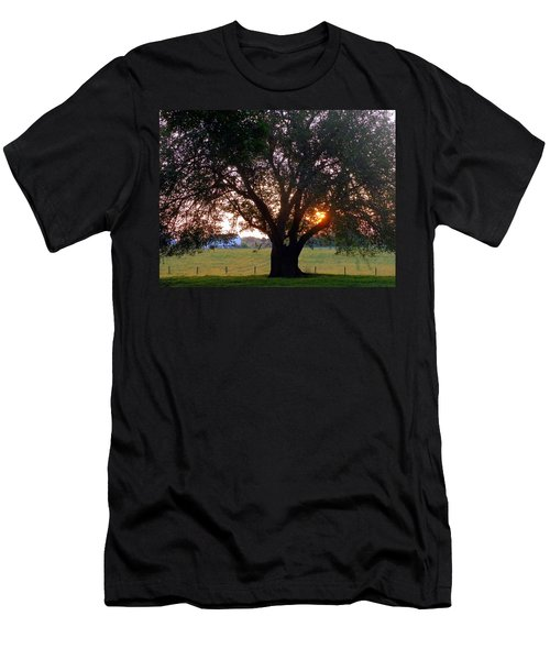 Tree With Fence. Men's T-Shirt (Athletic Fit)