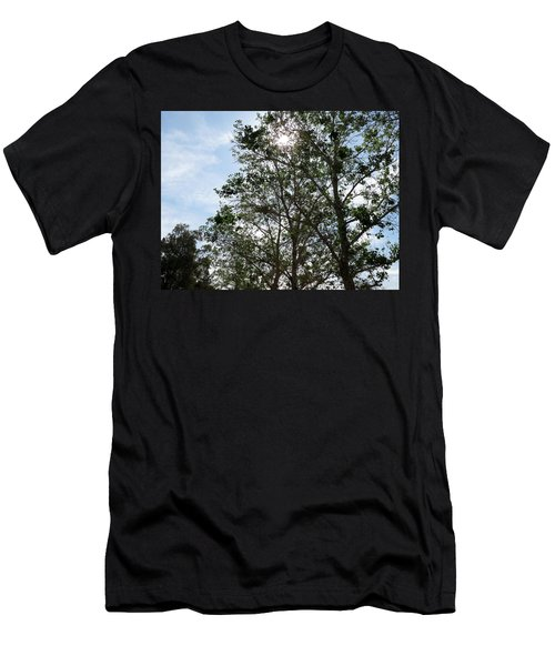 Trees At The Park Men's T-Shirt (Slim Fit) by Laurel Powell