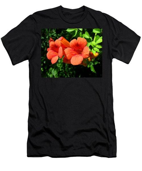 Wild Trumpet Vine Men's T-Shirt (Athletic Fit)