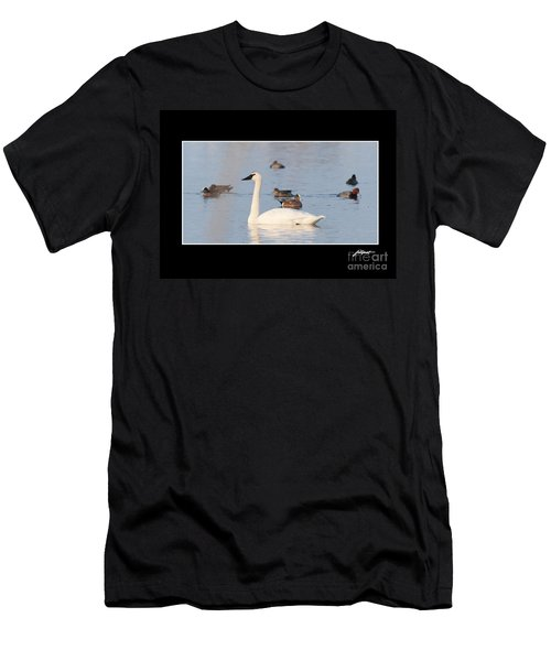 Trumpeter Swan Men's T-Shirt (Athletic Fit)