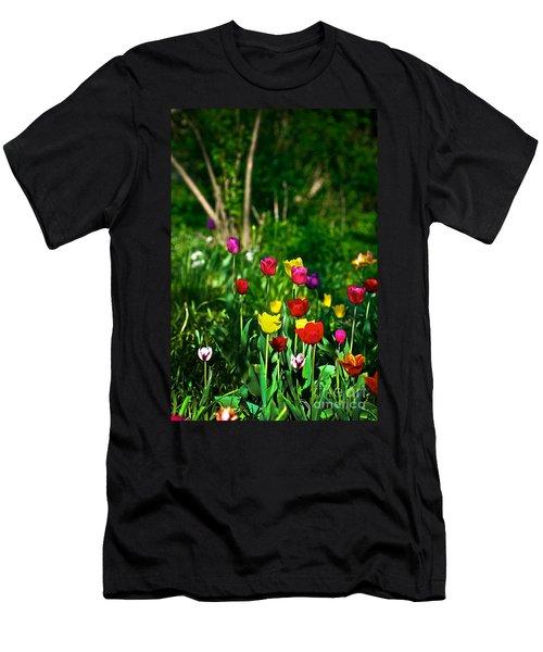 Tulip Rainbow Men's T-Shirt (Athletic Fit)