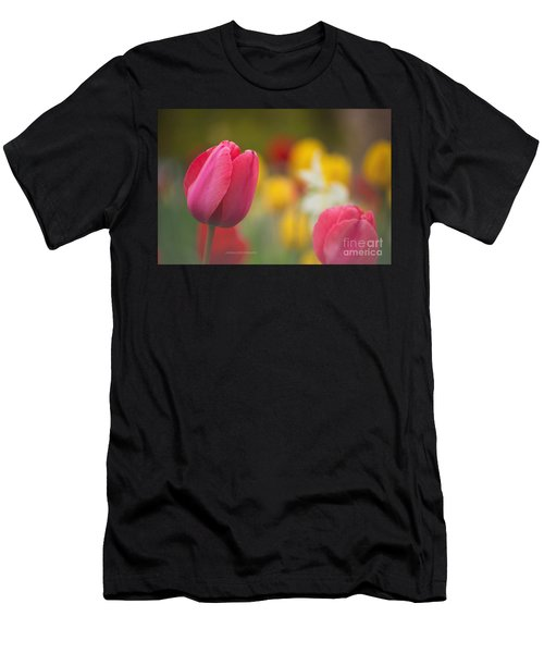 Tulips Blooming Men's T-Shirt (Athletic Fit)