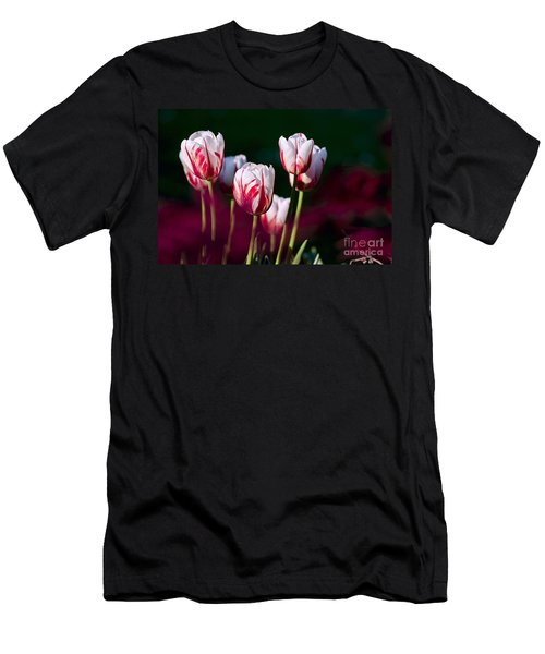 Men's T-Shirt (Slim Fit) featuring the photograph Tulips Garden Flowers Color Spring Nature by Paul Fearn