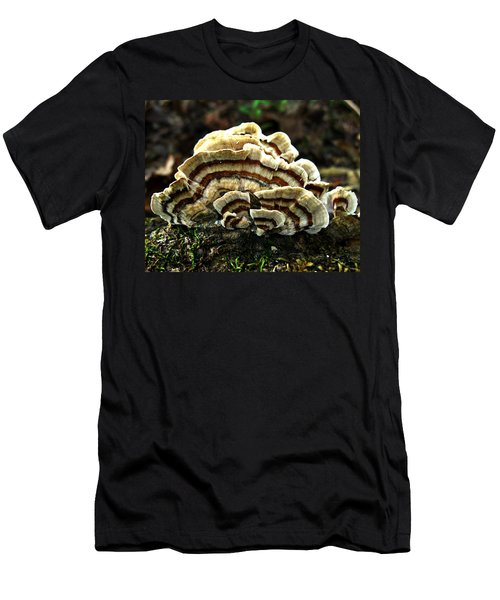 Turkey Tail Fungi Men's T-Shirt (Athletic Fit)