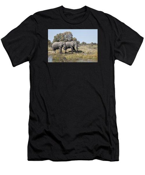 Two Bull African Elephants - Okavango Delta Men's T-Shirt (Athletic Fit)