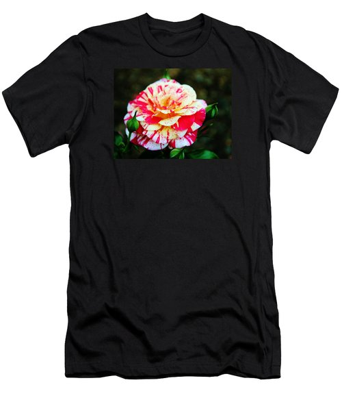 Two Colored Rose Men's T-Shirt (Athletic Fit)