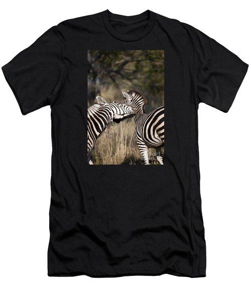 Two Plains Zebra Botswana Men's T-Shirt (Athletic Fit)