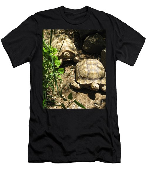 Two Tortoises Men's T-Shirt (Slim Fit) by CML Brown
