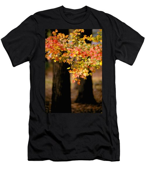 Two Trees Men's T-Shirt (Athletic Fit)